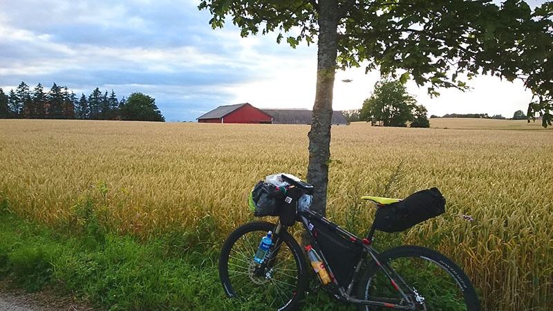 bikeinthefield
